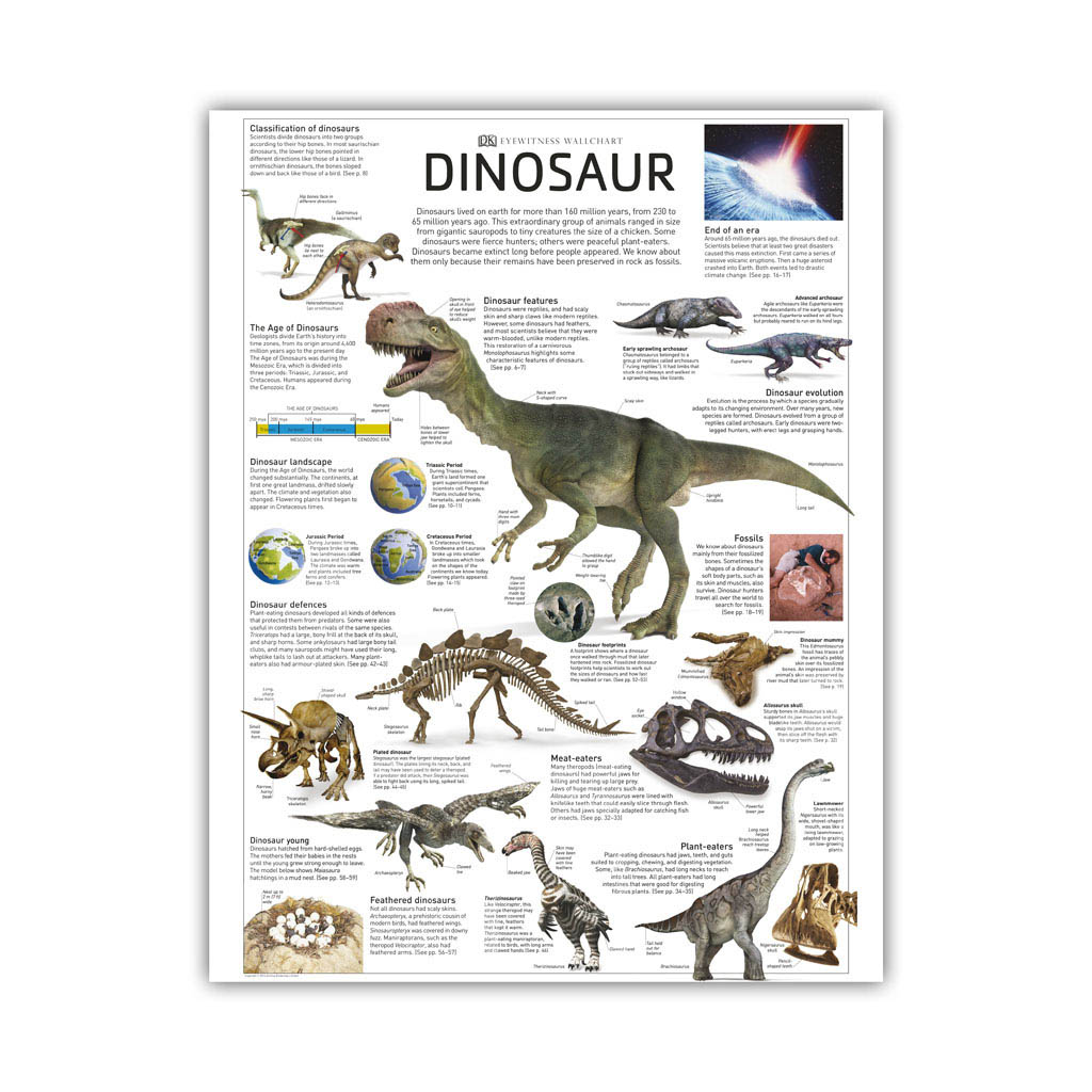 "Kniha ""Eyewitness Dinosaur"""