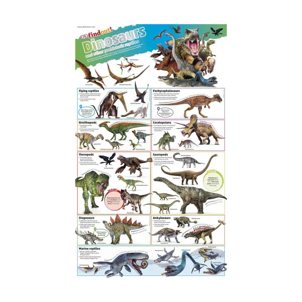 "XXL plagát ""DKfindout! Poster - Dinosaurs """