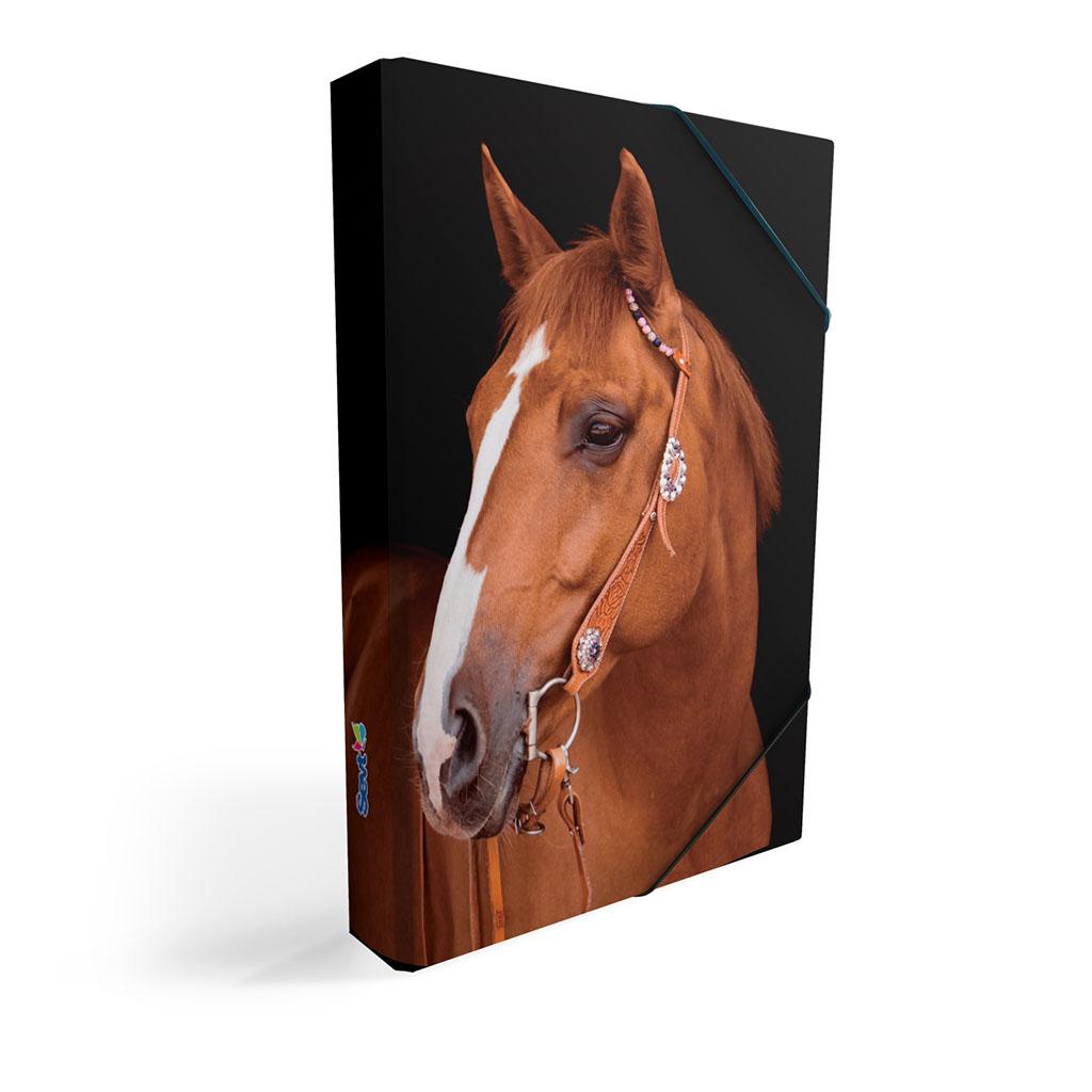 Dosky s boxom A4 lamino, zviera - kôň 2019