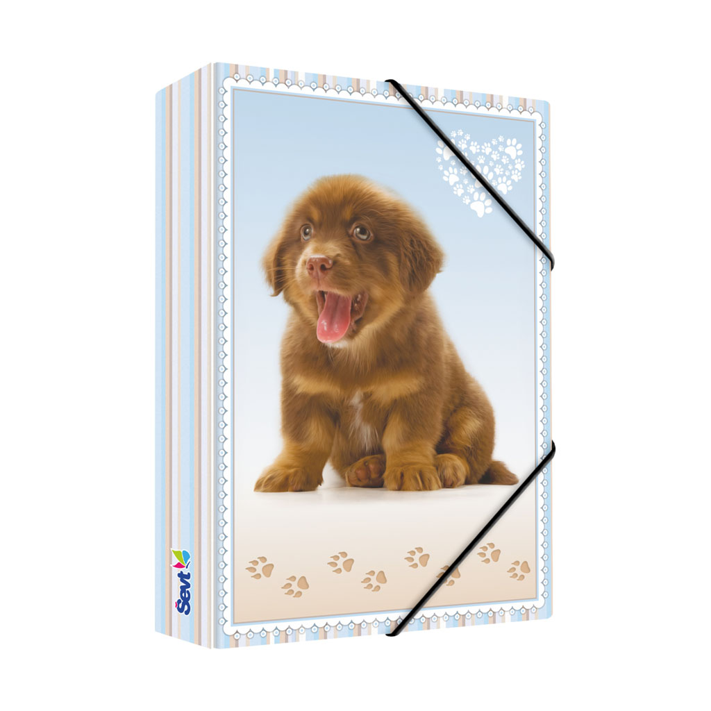 Dosky s boxom A5 lamino - pes
