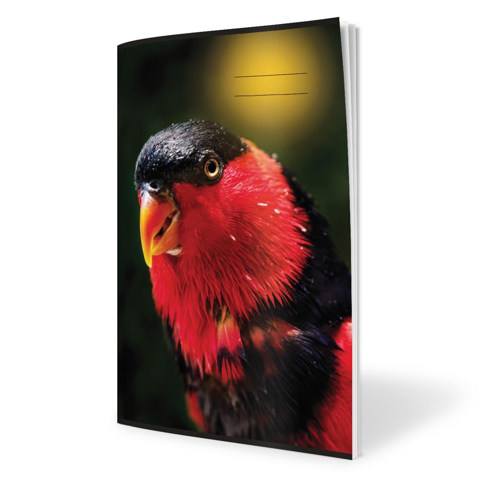Zošit 4210, A4 štvorčekový (10 x 10), 20 l., zviera - papagáj 2019