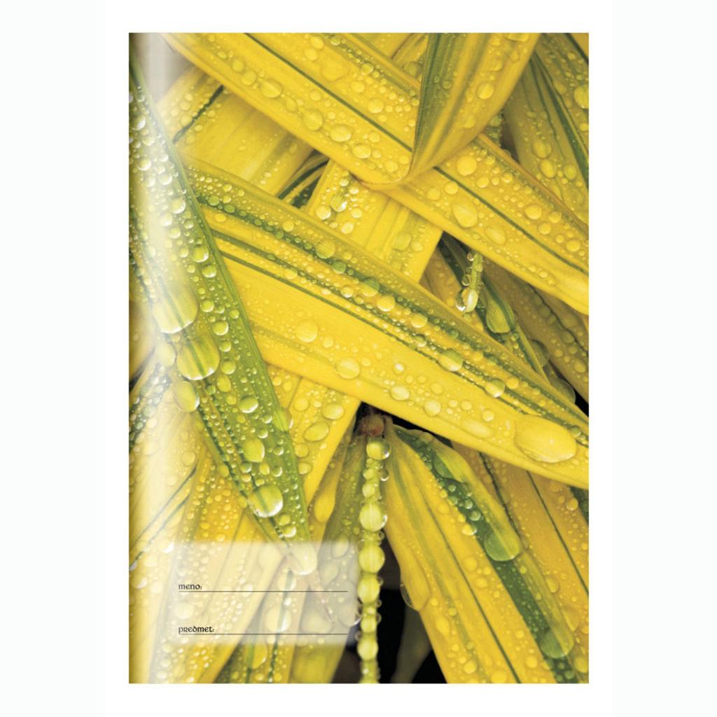 Zošit 565, kukuričné lístie, A5, štvorčekový (5 x 5), 60 l. - príroda
