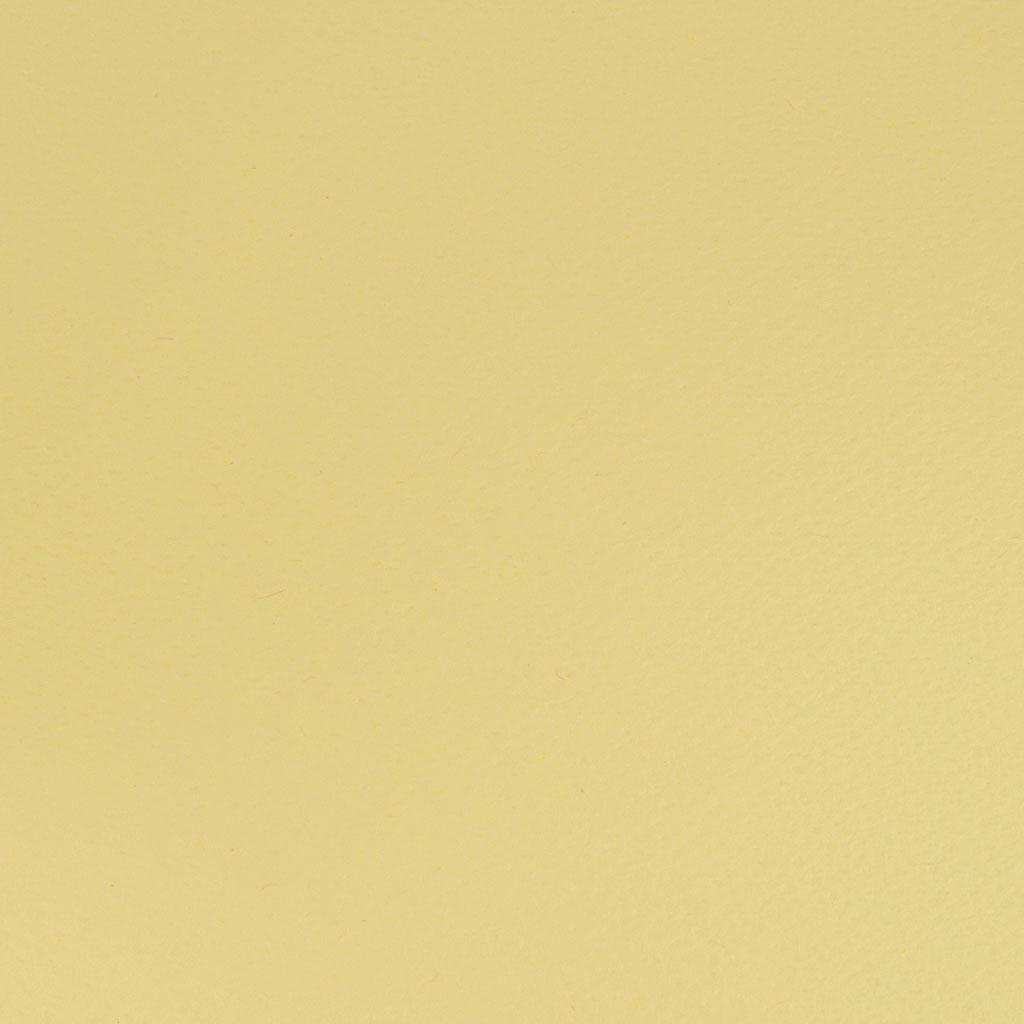 Papier vizit. A4 220 gr. Favini Prisma 1/S 04 chamois / 10 ks