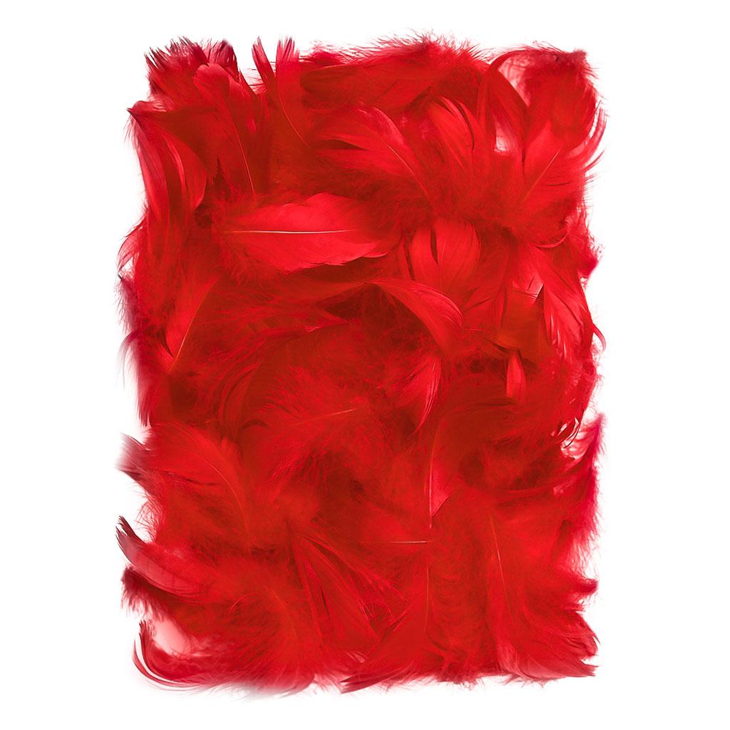 Dekoračné pierka 5 – 12 cm, 10 g, červené