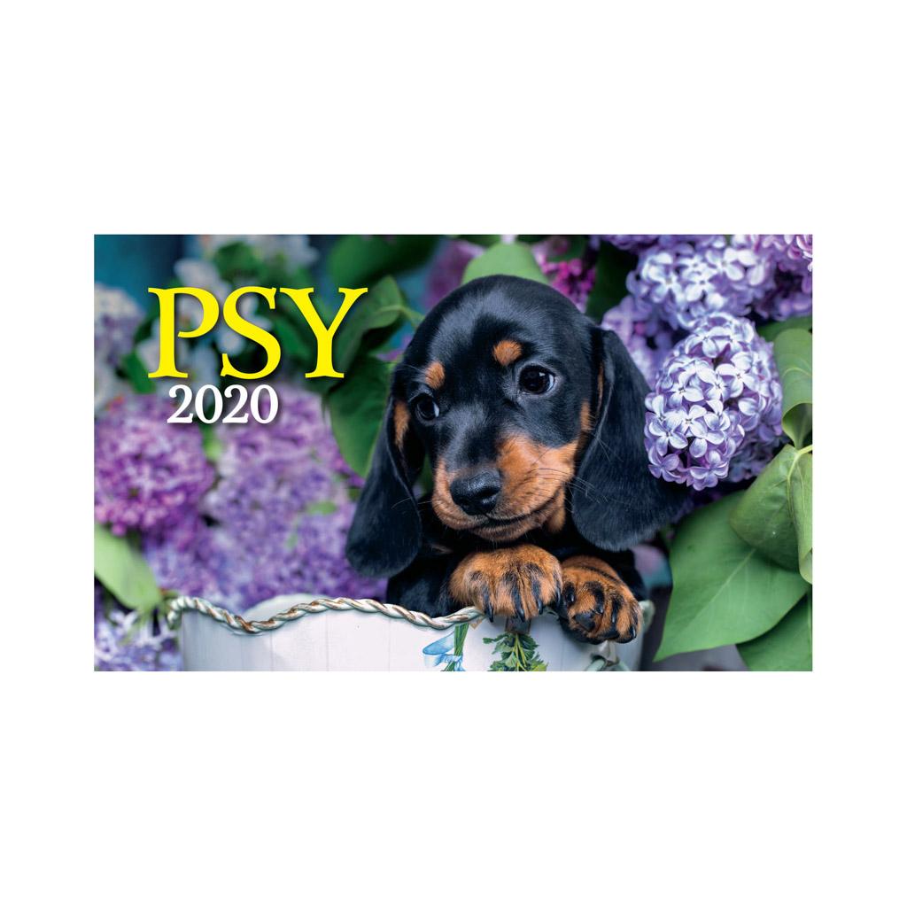 Psy 2020 / S20 (230x140 mm)