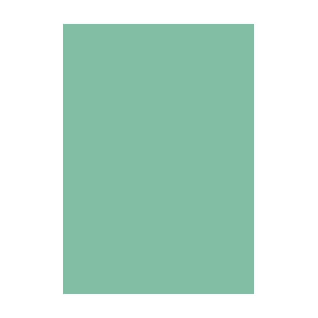 Kresliaci kartón 300g/m2 50x70 cm - svetlo zelený