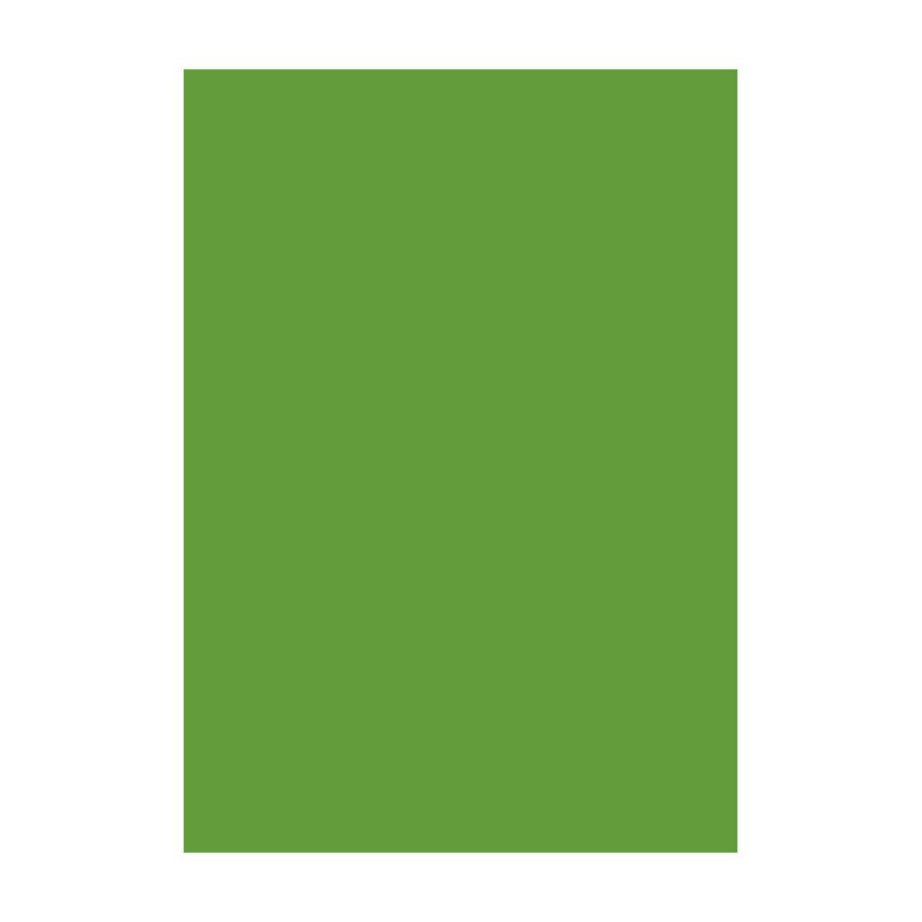 Kresliaci kartón 300g/m2 50x70 cm - trávovo zelený