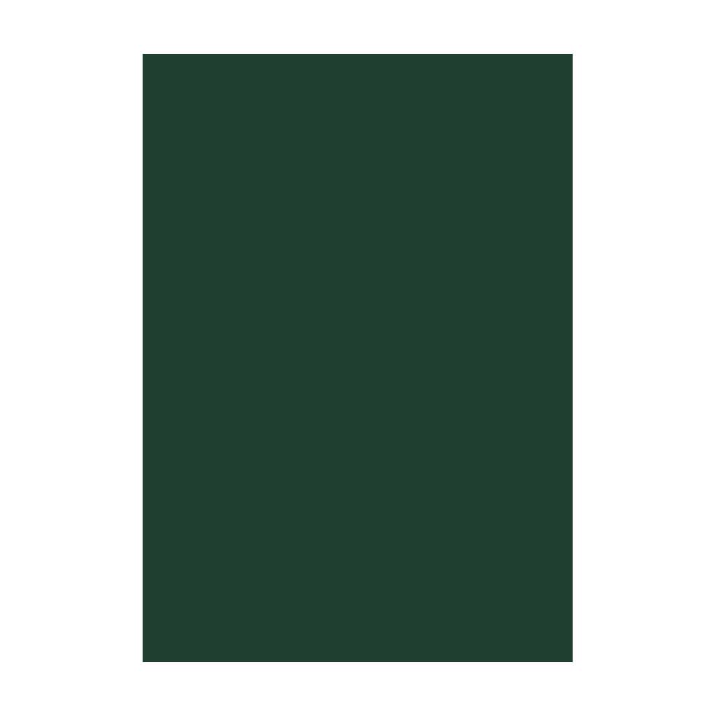 Kresliaci kartón 300g/m2 50x70 cm - tmavo zelený
