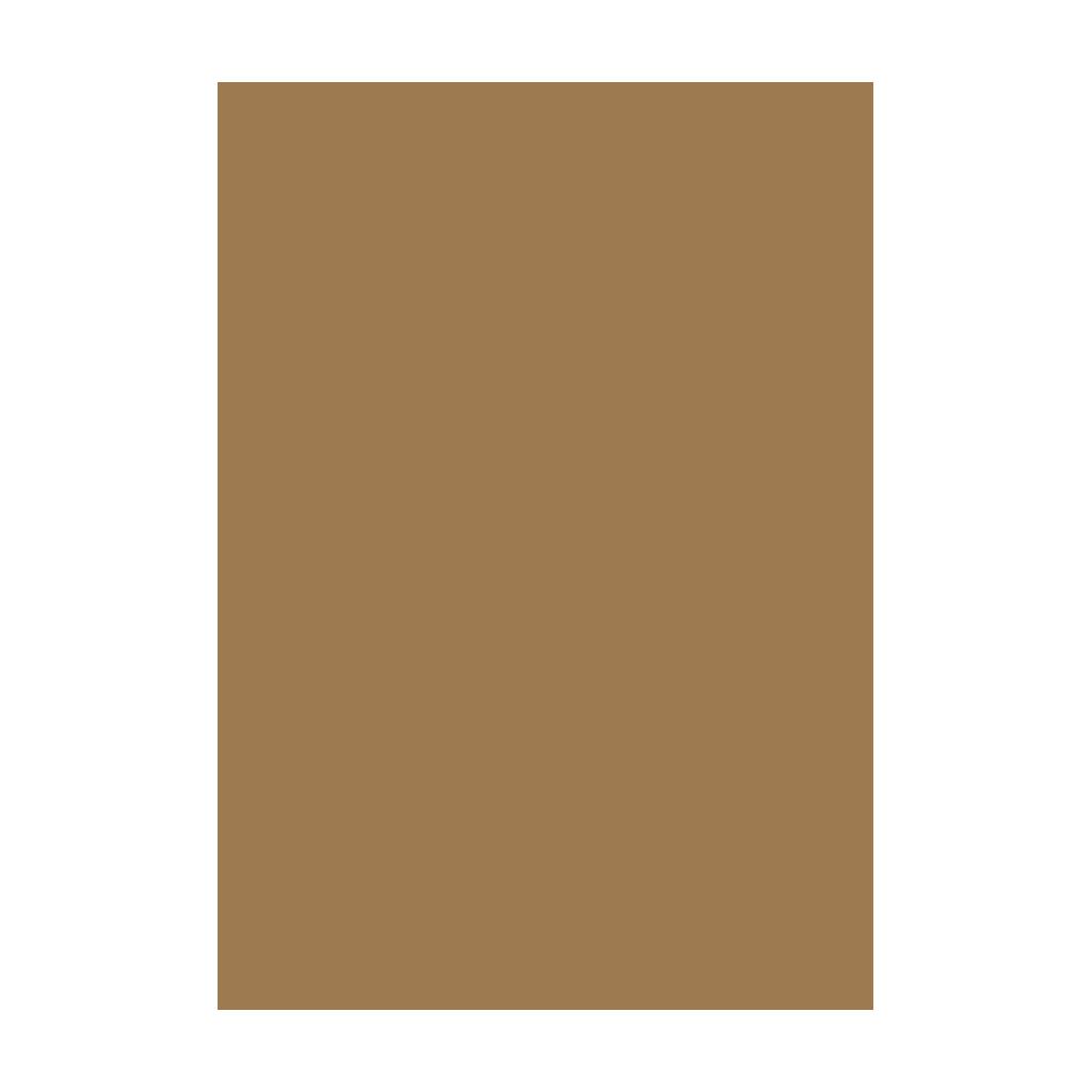 Kresliaci kartón 300g/m2 50x70 cm - zlatý