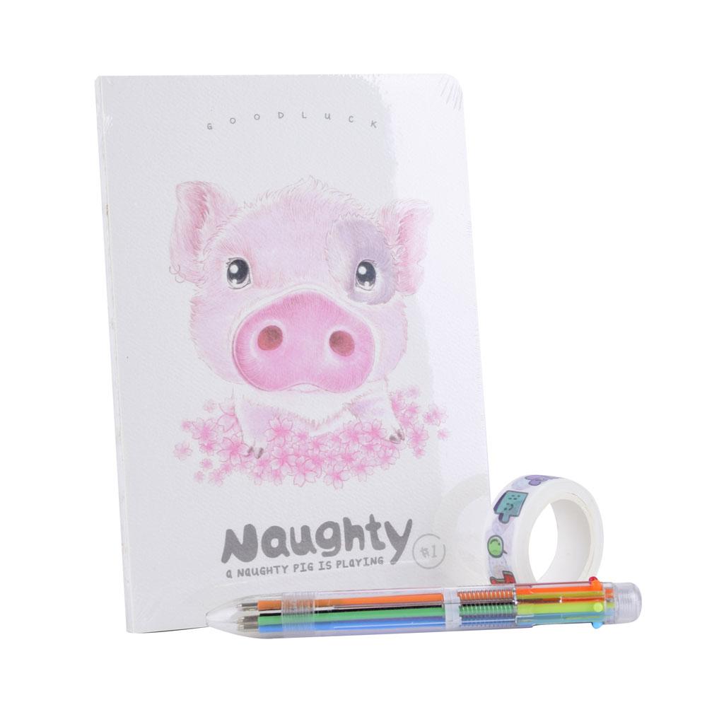 Set plánovač na 100 dní + washi páska + 6 farebné pero